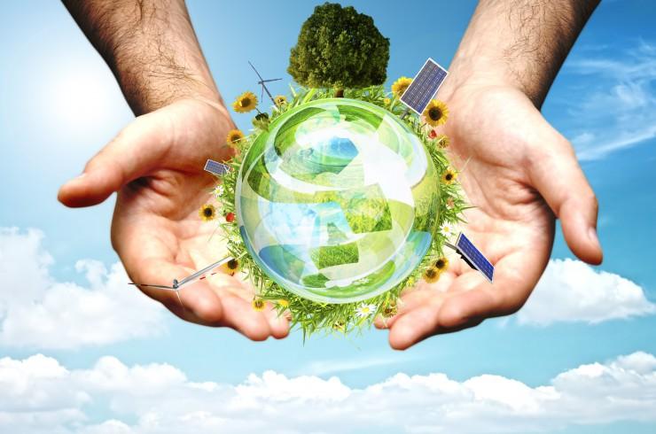 Környezeti fenntarthatósági ismeretek Tréning