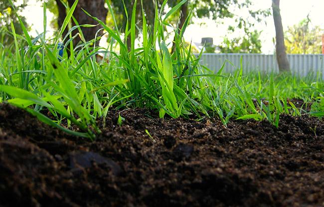 Bio- és zödhulladék hasznosítás, komposztálás Képzés - Tanfolyam
